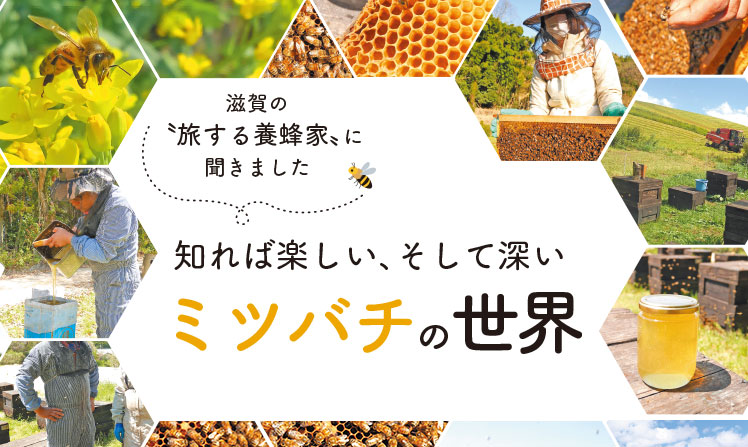フロント記事(滋賀)